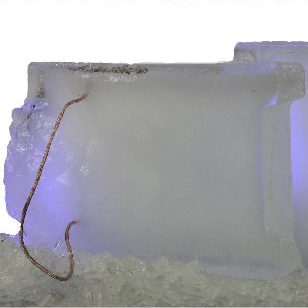 eco ice building